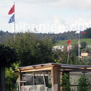 Flaggen im Schrebergarten