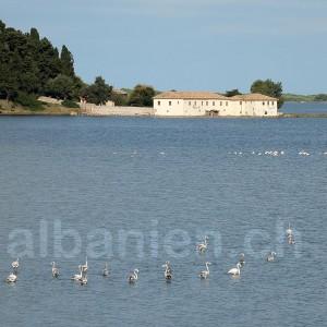 Kloster Zvërnec in der Lagune von Narta