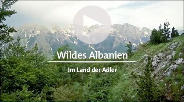 ARD-Reportage