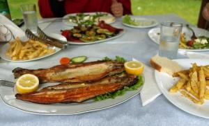 Typisches Mittagessen in Pogradec: Fisch und Kartoffeln
