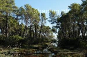 Nationalpark Divjaka